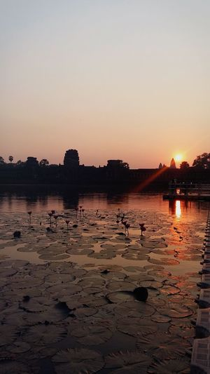 Cambodia Angkor Wat Temple Sky Water Sunset Nature Silhouette Beauty In Nature Reflection Orange Color Clear Sky Land Scenics - Nature Architecture Tranquility Idyllic Outdoors Tranquil Scene