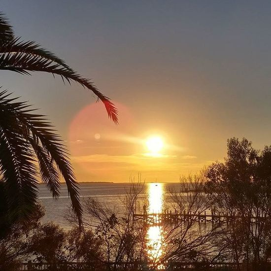 Love seeing the beautiful LoveFl Emeraldcoast Emeraldcoasting Sunsets Trees nature's Mirror Reflection Boat Navarre NavarrebeachBridge Lgfanview LGG4 Lazerfocus @lggulf @lgusamobile @lgus @sharealittlesunshine @pureflorida @lgmobileglobal @LGUSAMobile @lggulf