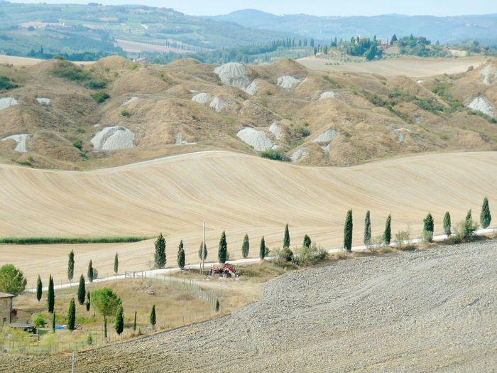 Campagne Toscane, Italie