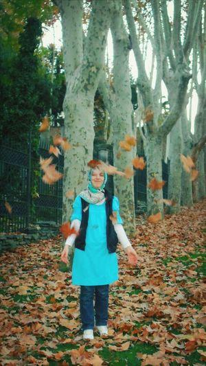 Sonbahar Autumn Leaves Yellow And Orange Gulhaneparki