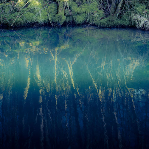Reflections Abstract Backgrounds Beauty In Nature Blue Forest Mystical Atmosphere Nature Pond Reflection Scenics Tree Water Water Mirror