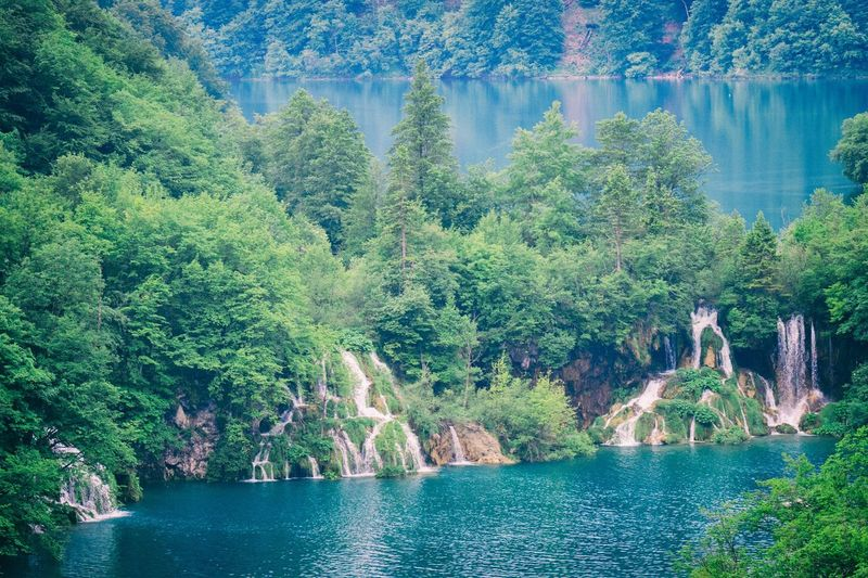 Croatia Hiking Beauty In Nature Day Environment Flowing Water Forest Green Color Idyllic Lake Land Nature Plant Plitvice National Park River Scenics - Nature Tranquil Scene Tranquility Tree Water Waterfall Waterfalls Waterfront Winnetou Woods
