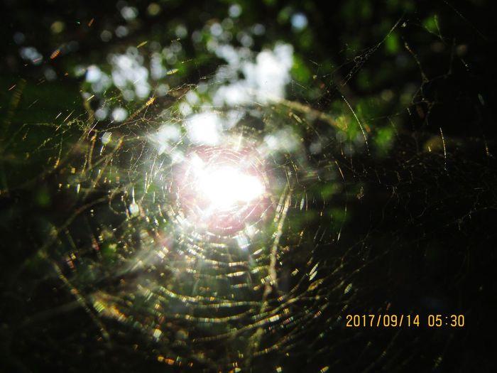 Miteymites The Sun Is Peaking Through