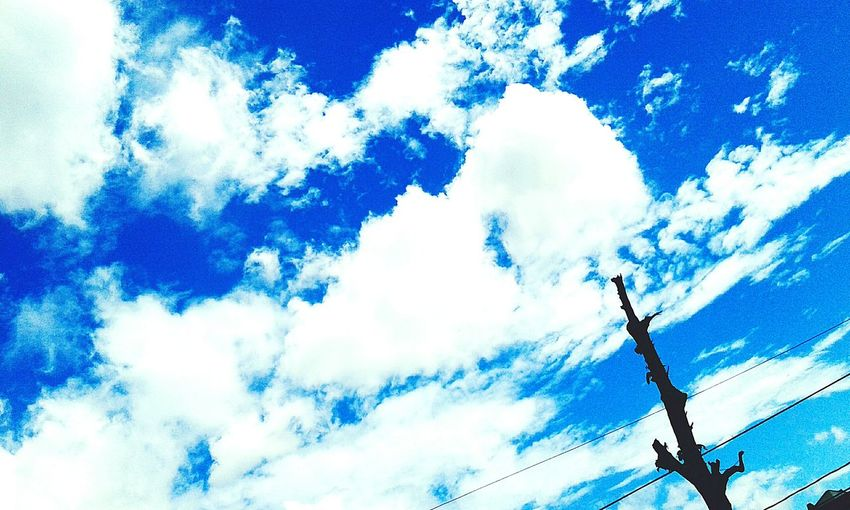 Skies are blue Vscocam Sky Sky_collection Happy Editing First Eyeem Photo