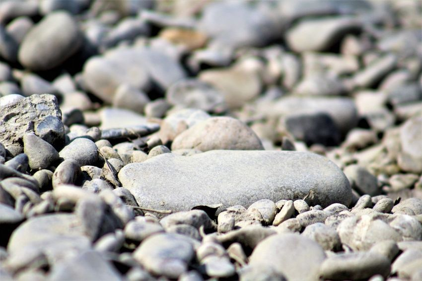 Beach Beauty In Nature Close-up Day Nature No People Outdoors Pebble Pebble Beach Shore Stone - Object Surface Level