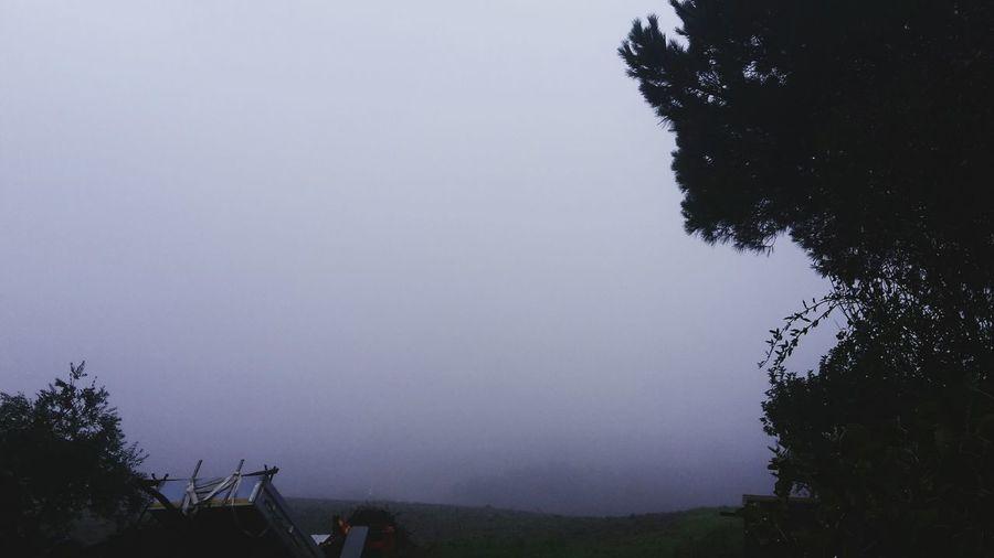 Staffolo è scomparso. Nebbia Tutto Bianco Landscape