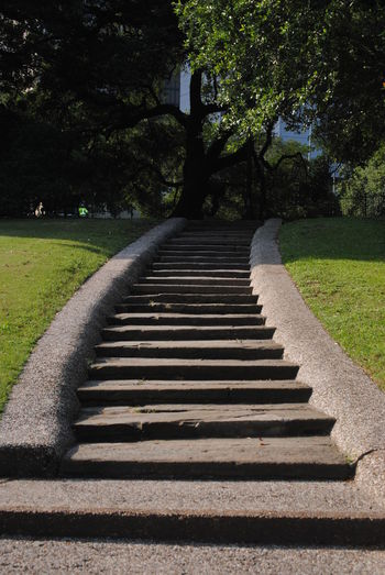 Sam Houston Park. Diminishing Perspective Empty Grass Growth Lawn Nature Outdoors Park Sunlight The Way Forward Tranquil Scene Tree Vanishing Point Walkway Stairs_collection Stairs_up Trees Collection