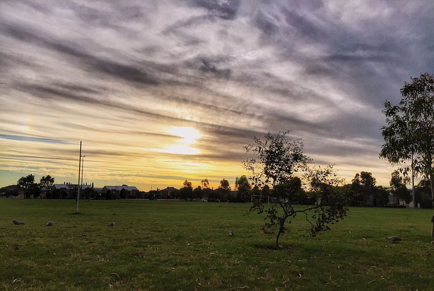 Atmospheric Mood Beauty In Nature Cloud - Sky Sunset Scenics Landscape Nature Rural Scene Outdoors EyeEm Nature Lover Nature On Your Doorstep