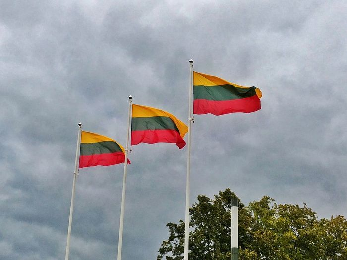 Three flags of Lithuania. Lt Ltu Lithuania Cloudy Day Cloudy Sky Travel Palanga Lgg6 Tree Multi Colored Politics And Government Flag Sky Cloud - Sky National Icon Symbolism