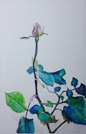 Art, Drawing, Creativity Drawing EyeEm Flower Art 08012015夜凉