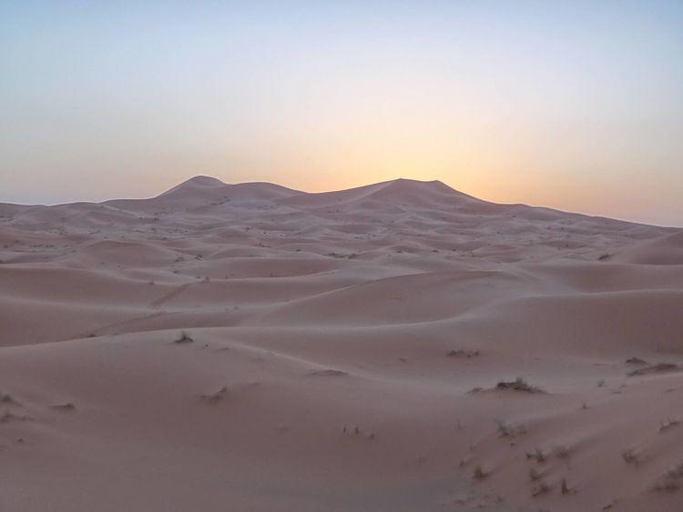 Desert EyeEmNewHere Orange Amazing Nature Nature And Me Sahara Sand Dune Sunset