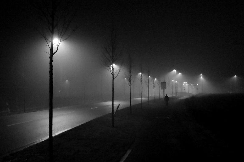 Foggy beginning