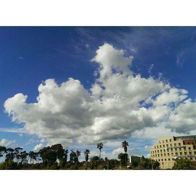 Suspended animation Cityofcapetown Cityofcapetownskies Cloudscapes Cloudalbum Cloudporn Ig_capetown Igerscapetown Blueandwhite