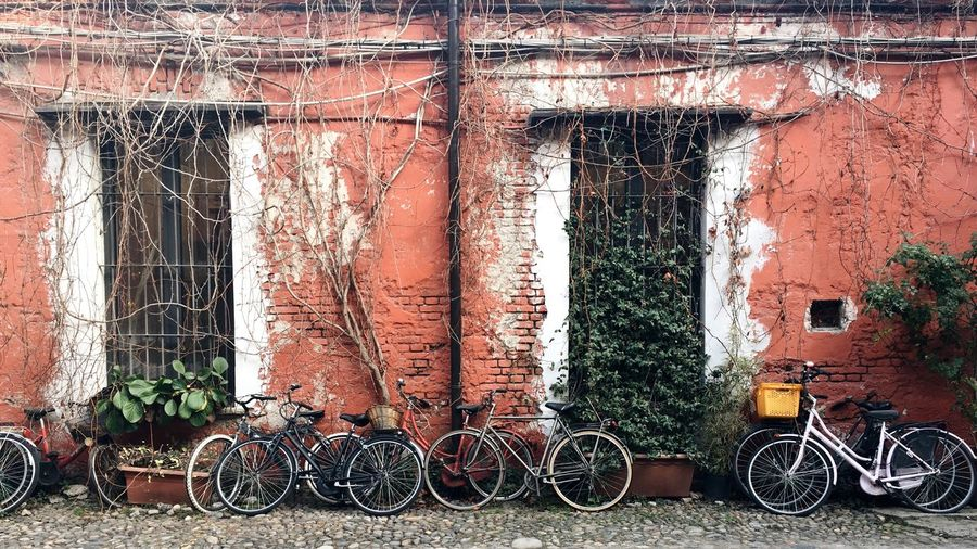 Brick Wall Brick Building Window Old Building Vintage Built Structure No People Architecture Day Building Exterior Land Vehicle Mode Of Transportation Bicycle Window Wall - Building Feature Plant