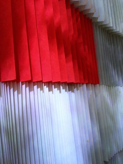 纸之艺术👤💪👏👏 Dim Sum