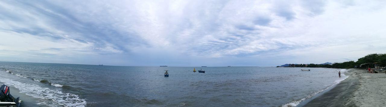 Bahía tortuga,