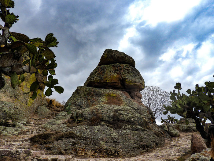 Sky Cloud - Sky Day Low Angle View Outdoors Old Ruin No People Nature Tree Beauty In Nature Architecture Ancient Civilization Guanajuato Roca Del Mono Roca Del Mandril Prehistoric Monument Rural Scene El Coporo Mexico EyeEmNewHere Beauty In Nature Sommergefühle EyeEm Selects