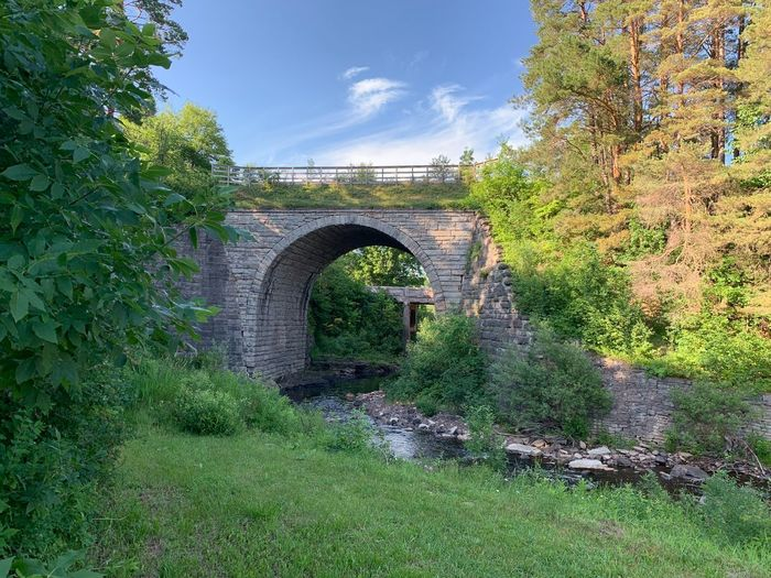 Arch bridge amidst trees against sky