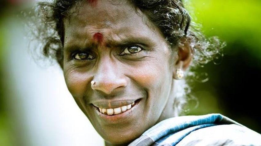 Traveling In Sri Lanka Portrait Woman