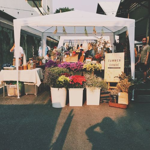 Market Organic Markets Bangkok OpenEdit Eye4photography  Streetphotography My Daily Commute Thailand Flowers
