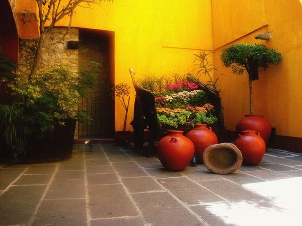 Puebla Puebla De Zaragoza Mexico Convento Religious Architecture Monjas Hotel Yellow Flowers Barroque Camino Real