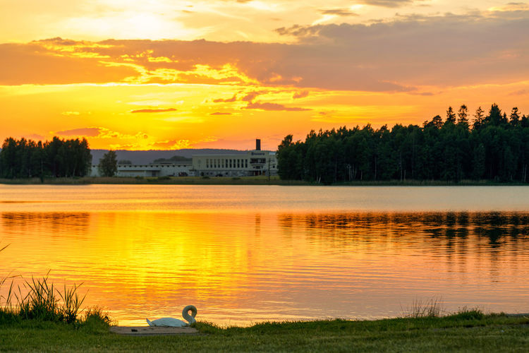 Yoga swan.. EyeEm Best Shots EyeEm Gallery EyeEm Selects Sarpsborg Norway Tranquility Lake Tree Water Sunset Farmer Fisherman Lake Silhouette Reflection Gold Colored Fishing Dramatic Sky Romantic Sky Agricultural Field Calm The Great Outdoors - 2018 EyeEm Awards