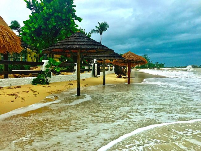 Hurricane Irma 2017 JeanneRotaMatthews EyeEmCaribbean EyeEmNewHere EyeEm Gallery Beach Sky Sea Nature Day Outdoors No People Beauty In Nature Water Sand Cloud - Sky Tree