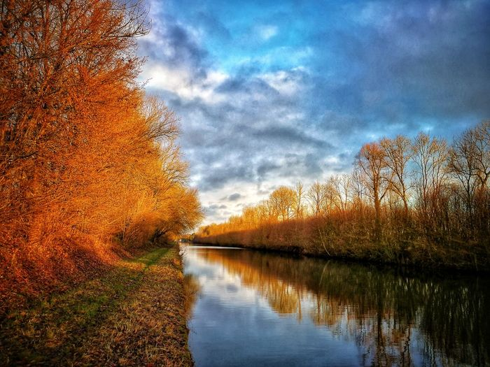 Au bord du canal. Reflection Sky Cloud - Sky Nature Water Outdoors Tree No People Beauty In Nature Scenics Day