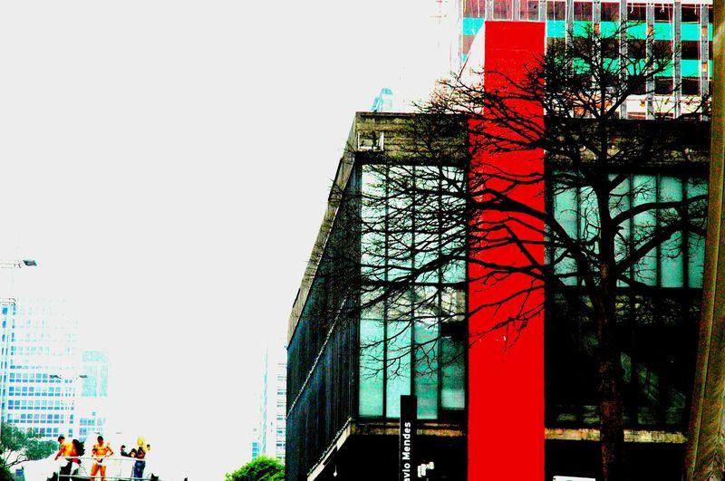 Architecture Outdoors City Colors Paradagay2011Sampa-Brasil Nikon Photography Nikond10 Photography Urban Photography Day Art Photography Construction Architecture MASPdetalhe Nature Color Photography Sao Paulo - Brazil