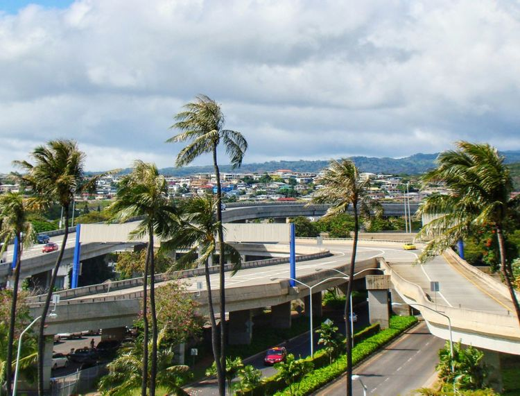 Travelphotography Hawaii Palm Tree Transportation Adapted To The City Sky Highwayscape Mountain Range