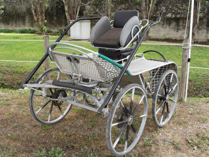 Old-fashioned horse carriage with green grass background Antique Armchair Bridle Cab Calash Caleche Horse Calèche Carriage Cart Chariot Couch Elégance Harness Historic Horse Cart Horsedrawn Old-fashioned Retro Riding Romantic Transportation Vehicle Vintage Whip Wood