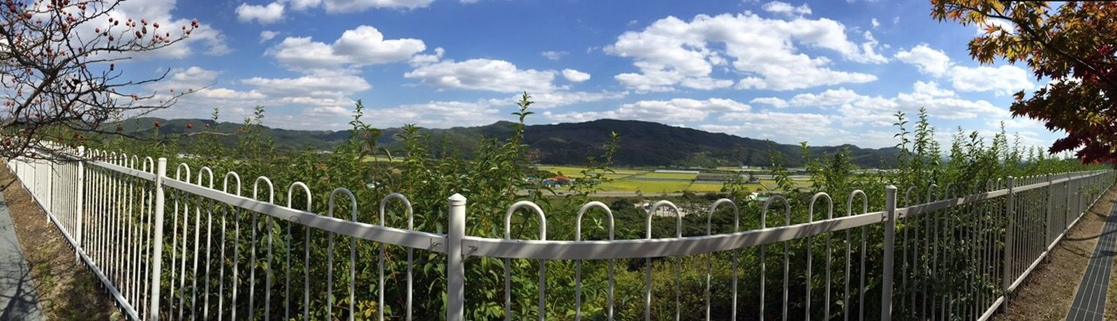 Hello World Haru Country Road Panorama 自然満々 Yesterday Phot 今日は高速で移動せねば‥😂😂チーン
