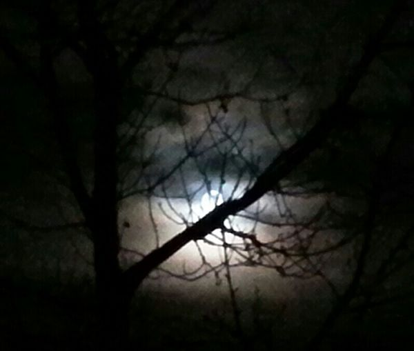 Same full moon without edit... and really beautiful with the light sphere shaped like a..... YES!!! A HEART!!!♡♡♡ I SEE HEARTS EVERYWHERE!!!♡♡♡ Check This Out Darkness And Light Warewolf Party Time I See You Full Moon Behind The Trees Dramatic Sky Hiding Moon Night Lights