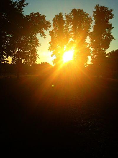 Running No Edit/no Filter Berlin Liebt Dich 25 Days Of Summer