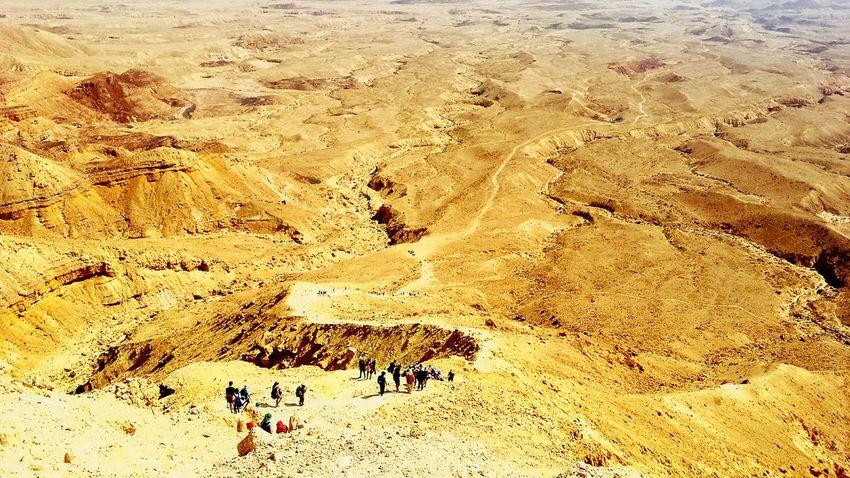 Feel The Journey 43 Golden Moments Original Experiences Desert Deserts Around The World Desert Beauty Class Trip Israel Israel Desert Natural Light Portrait