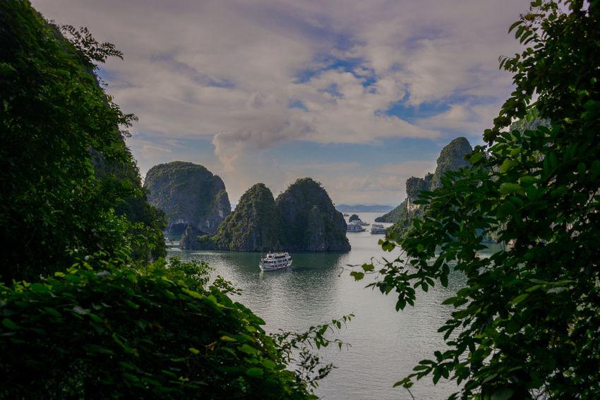 Halong Bay Vietnam Halong Bay Vietnam Halong Bay  Halongbay Vietnam Boat Boats Vietnam Travel Vietnam Trip Vietnamphotography Vietnamtravel