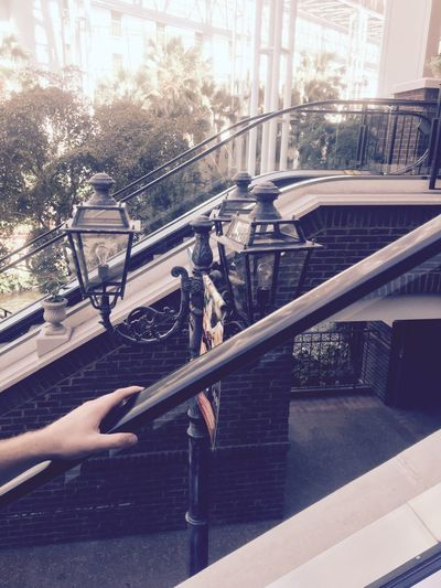 Lights Railing Balcony Cold Temperature Steps Mode Of Transport Relaxation Day Outdoors Gaylord Opryland Resort