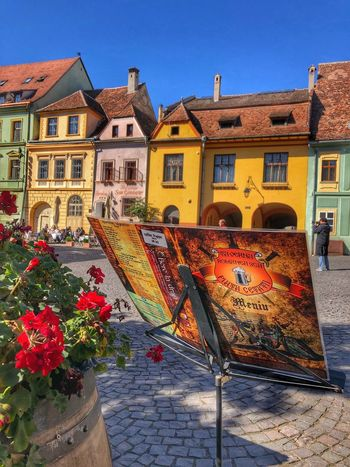 Medieval towns Sighisoara-Romania Historical Building Fairytalelike Picturesque Eyeemarchitecture Eastern Europe Medieval Town Quaint Places EyeEm Gallery EyeEm Best Shots Facades Colorful Houses Eye Em Around The World Street Photography Building Exterior Built Structure Architecture Building Nature City Sunlight Day Clear Sky Flowering Plant Outdoors Shadow