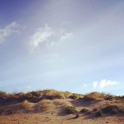 Dunes. #roadtrip Roadtrip Greatoceanroad Lachlanpayneawesomeamazingphotosbestinstagramereverfollowmenow Payneroadtrip