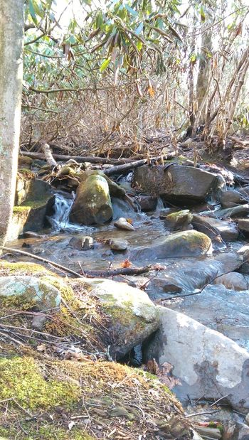 Beauty In Nature Outdoors Day No People Water Nature Mountain Stream, Mountain Creek EyeEmNewHere