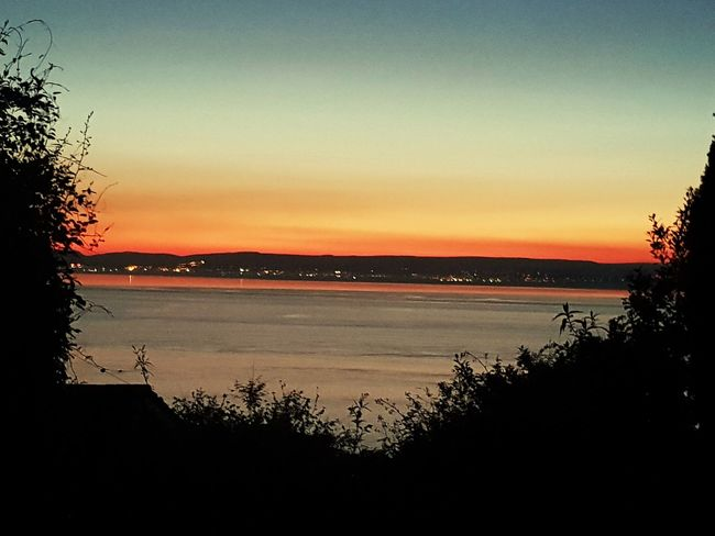 Water Tree Sea Sunset Beach Silhouette Reflection Sky Horizon Over Water Romantic Sky