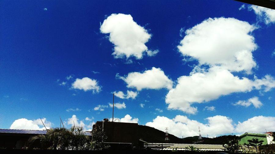 天咚 Eye4photography  Summer ☀ Hot Taking Photos Sky And Clouds 【七夕】棉花糖乖,今天別放閃!!!! 日日是好日 Walking Around Summer Views The Important Thing Is To Participateなんちゃってmission