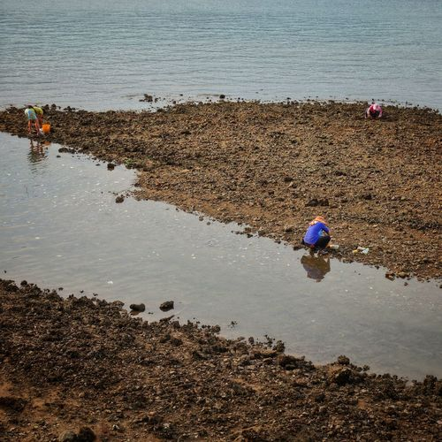 High angle view of people working on beach