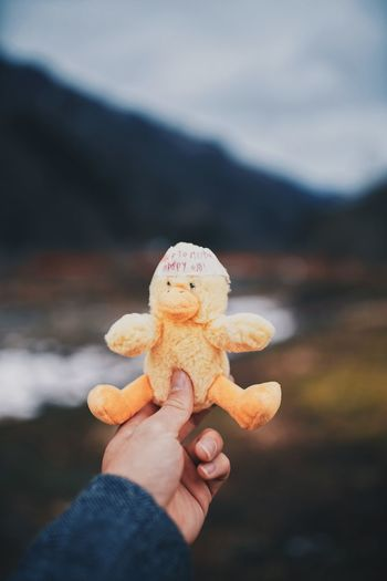 Close-up of hand holding stuffed toy