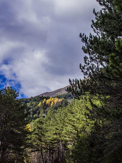 Cloud - Sky Sky Beauty In Nature Scenics - Nature Nature Tranquility No People Tranquil Scene Environment Land Day Landscape Non-urban Scene Mountain Outdoors