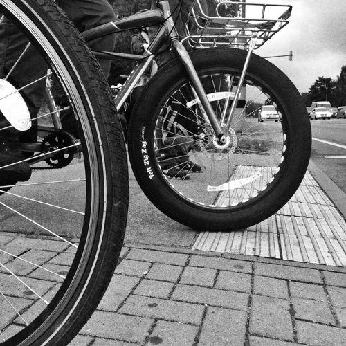 Big fat black Bicycle Wheel Tire Streetphotography Blackandwhite Black And White Rostock Lichtenhagen