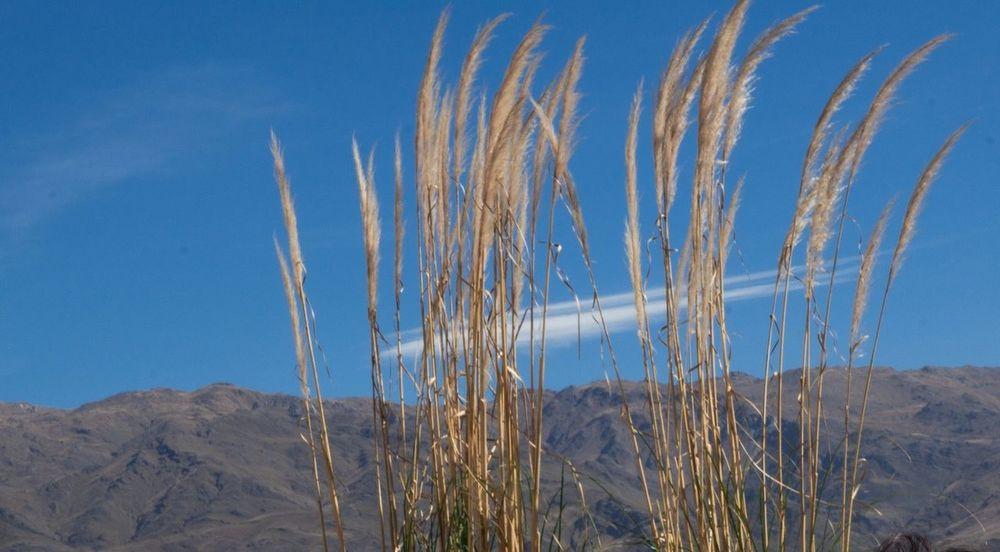 Tucumán  TafiDelValle Cerros Mountain