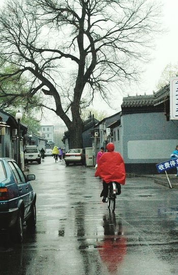 Rear View Walking Tree Rain Full Length Water Rainy Season Lifestyles Outdoors Bare Tree Wet One Person The Way Forward Day Real People Nature Sky People Adults Only Architecture BEIJING北京CHINA中国BEAUTY