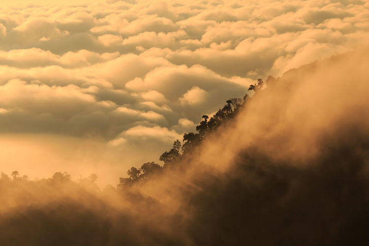 The landscape photos, beautiful sea fog in morning time in Thailand. Hazy  Day Low Angle View Dramatic Sky Majestic Fog Environment Outdoors Cloudscape Non-urban Scene Sunset Idyllic Nature No People Tranquil Scene Scenics - Nature Tranquility Beauty In Nature Sky Cloud - Sky Chiangmai Chiangdao Thailand