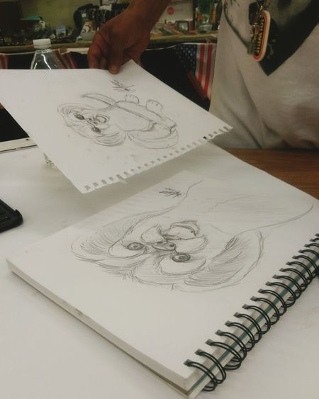 Drawing - Activity Indoors  One Person Adults Only Adult Only Men One Man Only People Human Body Part Day Human Hand Close-up Observing Drawings Sketches Sketchbook Sketchpad Shihtzu Dog Sketch